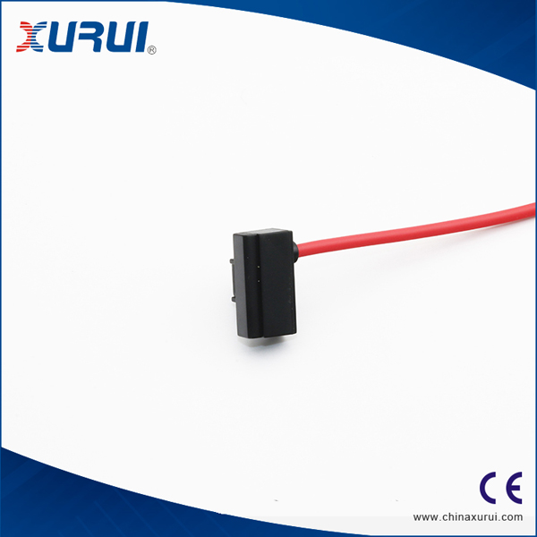 CS1-J Magnetic switch