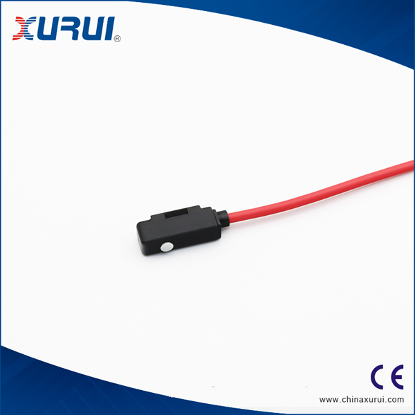 CS1-M Magnetic switch